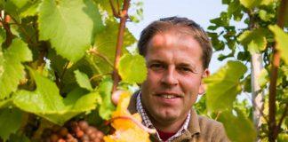 Mathieu Hulst van wijngaard De Apostelhoeve