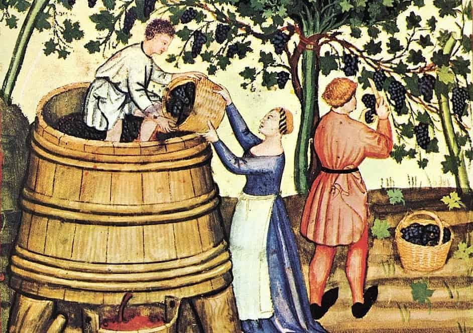 Wijngeschiedenis
